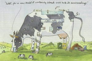 Cow Cartoon 2